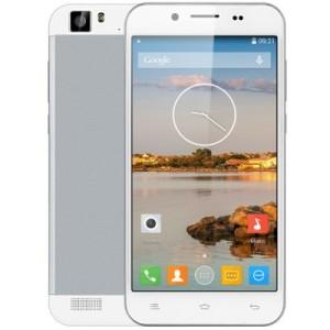 ZOPO ZP1000S 5.0 3G HD Smartphone mit Android 4.4, MTK6582 Quad Core 1.3GHz, 1GB RAM, 32GB Speicher, 8MP+2MP Kameras, 2.100mAh Akku